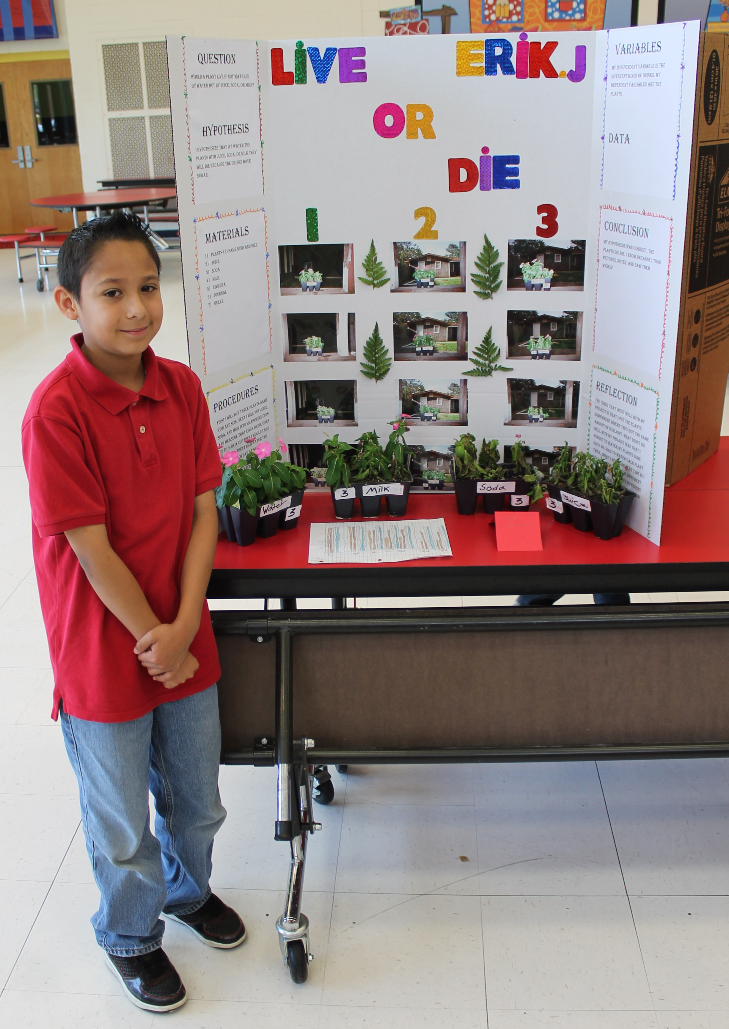 Blue Ridge Holds First Science Fair |